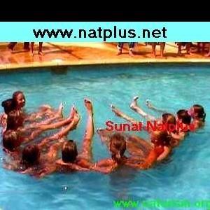 Sunat Natplus